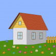 House on a meadow — Stock Photo #13513327