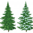 Christmas trees — Stock Photo #14721703