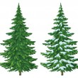 Royalty-Free Stock Photo: Christmas trees