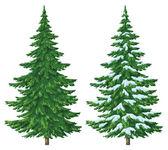 Christmas trees — Stock Photo