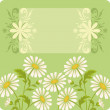 Flower holiday background - Foto de Stock