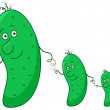 Stock Photo: Cucumbers, family