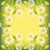Flower holiday background — Stock Photo