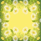 Flower holiday background — Stock Photo