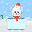 Rabbit Santa Claus  with the poster, winter — Lizenzfreies Foto