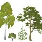 Forest plants set — Stock Photo