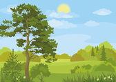 夏日风景树和天空 — 图库矢量图片