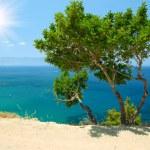 Cyprus landscape — Stock Photo #2653818
