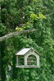 Bird house hanging — Stock Photo