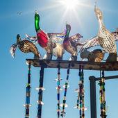 Ducks in Murano — Stock Photo