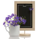 Consolida flowers menu — Zdjęcie stockowe