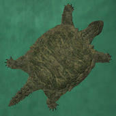 Proganochelys quenstedti — Stock Photo