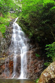 Wasserfall — Stockfoto