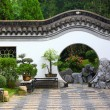 Chinese garden — Stock Photo #13525195
