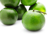 Green citrus — Stock Photo