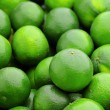 Lime citrus fruit - Stock Photo