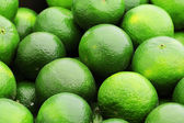 Green citrus fruit — Stock Photo