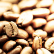 Coffee bean — Stock Photo #18443971