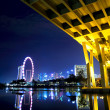 Singapore city at night - Lizenzfreies Foto