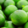 Lime citrus fruit — Stock Photo