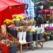 Flower fair for chinese new year - Stockfoto