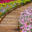Stock Photo: Wooden path in flower bed