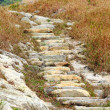 Mountain hiking path - Stock Photo