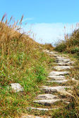 Mountain hiking path — Stock Photo