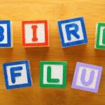 H7N9 bird flu toy block — Stock Photo