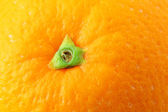 Orange peel close up — Stock Photo