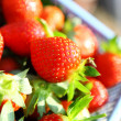 Fresh picked strawberries — Stock Photo #24760789
