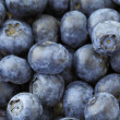 Blueberry — Stock Photo #24760793