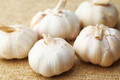Garlic on linen — Stock Photo