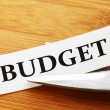 Stock Photo: Budget cut