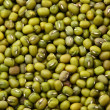 Mung bean close up - Stock Photo