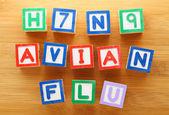 H7N9 avian flu toy block — Stock Photo