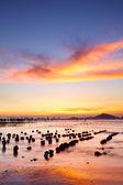Západ slunce pobřeží — Stock fotografie
