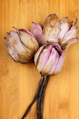 Bouquet of dead lotus — Stock Photo