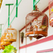 Birdcage on bird park in Hong Kong — Stok fotoğraf