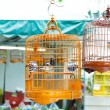 Birdcage on bird park in Hong Kong — Zdjęcie stockowe