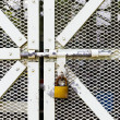 Stock Photo: Steel door with lock