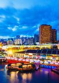 新加坡美丽夜景 — 图库照片