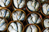 Fish in barrels for sell at market in Bangkok — Stockfoto