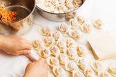 Homemade dumpling — Foto de Stock