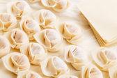 Ev yapımı Çin böreği — Stok fotoğraf