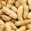 Stock Photo: Peanut