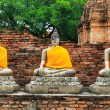 Stock Photo: Ancient Buddhin Ayuthaya, Thailand