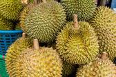 Durian — Stock Photo