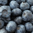 Blueberry — Stock Photo #31385995