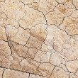 Stock Photo: Dried crack land